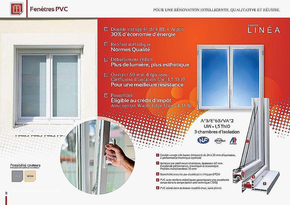 changer double vitrage fenetre pvc